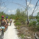 bicycle tour rentals